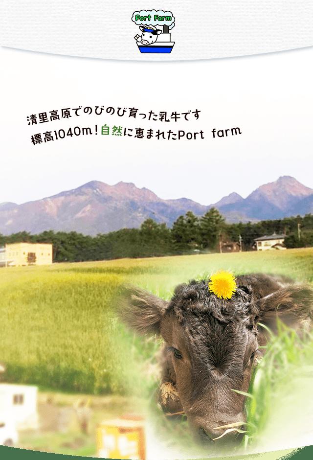 Port Farm